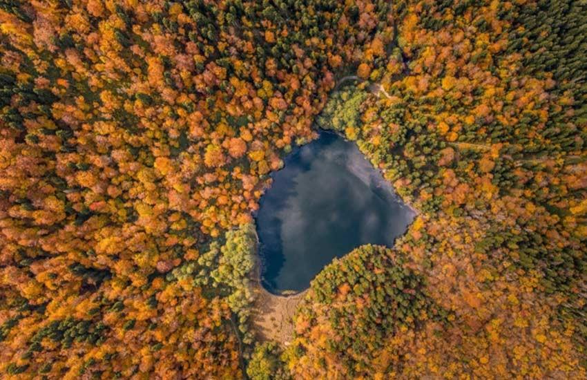 طبیعت گرجستان در پاییز
