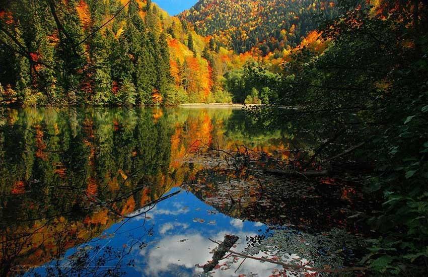 طبیعت گرجستان در تابستان