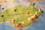 راهنمای سفر به استرالیا؛ سرزمین کوالاها و کانگوروها