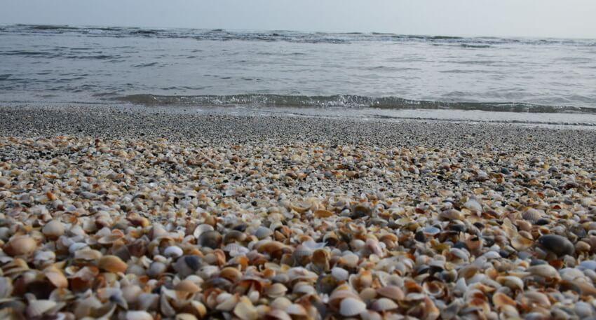 ساحل صدف آستارا از زیباترین سواحل ایران
