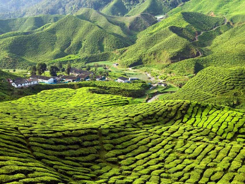 سفر به مالزی