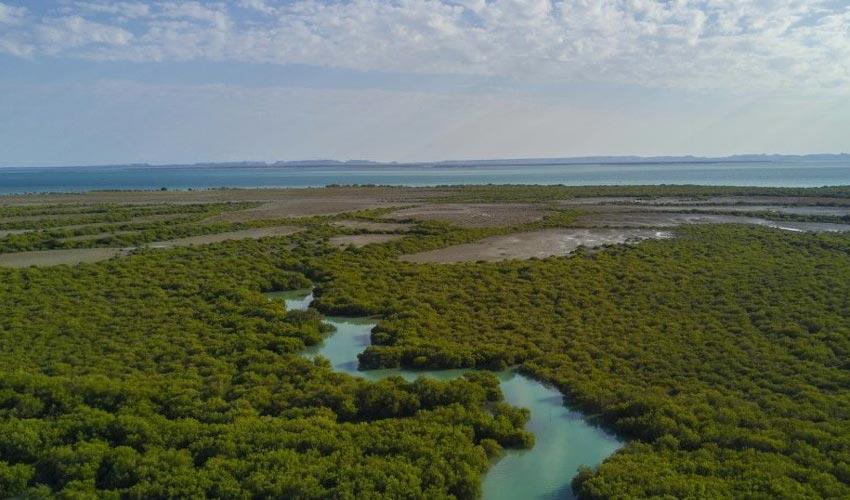 جزیره قشم از دیدنی ترین جزایر ایران