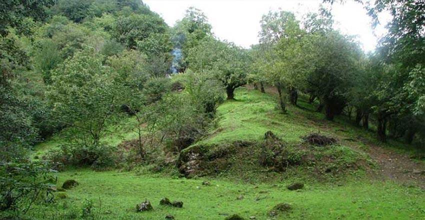 روستای کوته کومه