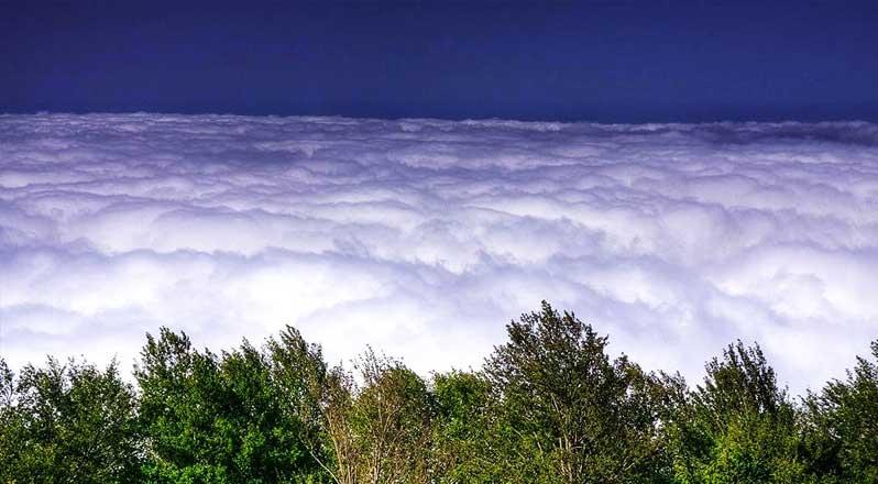 زیبایی های جنگل ابر