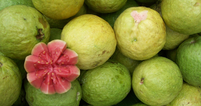 میوههای استوایی از سوغاتی های چابهار