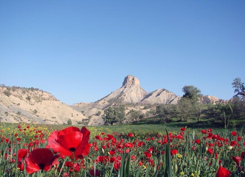 کوه قلاقیران از جاهای دیدنی ایلام