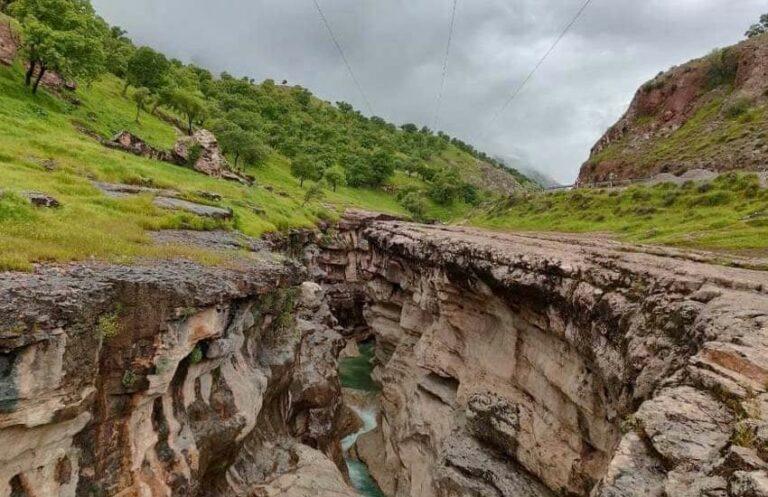 تنگ رازیانه در استان ایلام
