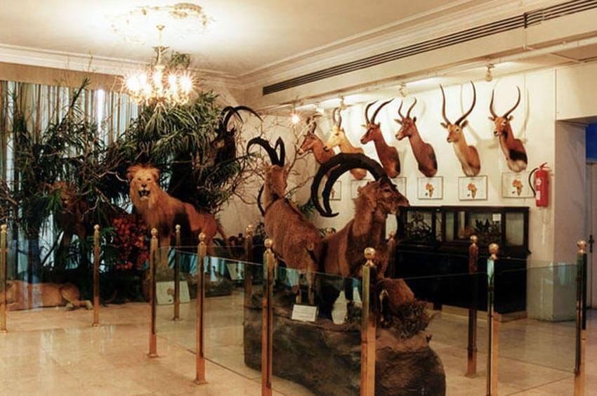 موزه تاریخی طبیعی در ایلام