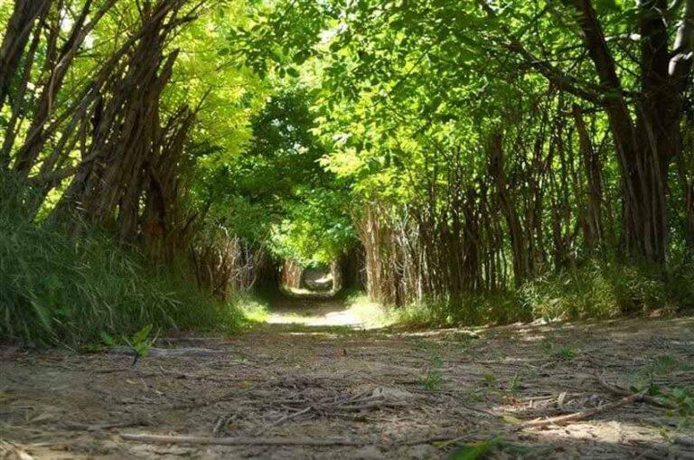 روستای بانقلان در استان ایلام