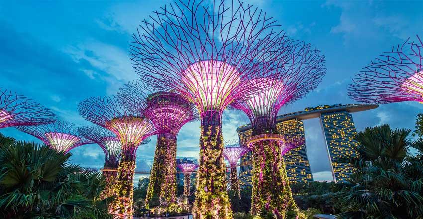 انواع ویزای سنگاپور