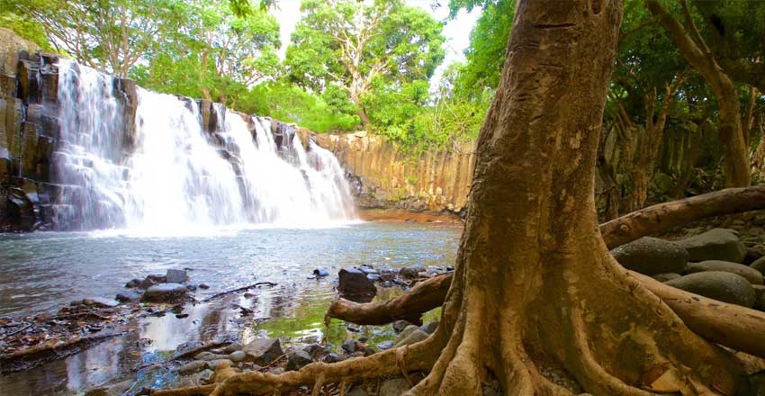 کشف آبشار و کوهنوردی در جزیره موریس