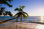 ساحل درختان نارگیل کیش؛ یکی از جذابترین سواحل جزیره جنوبی