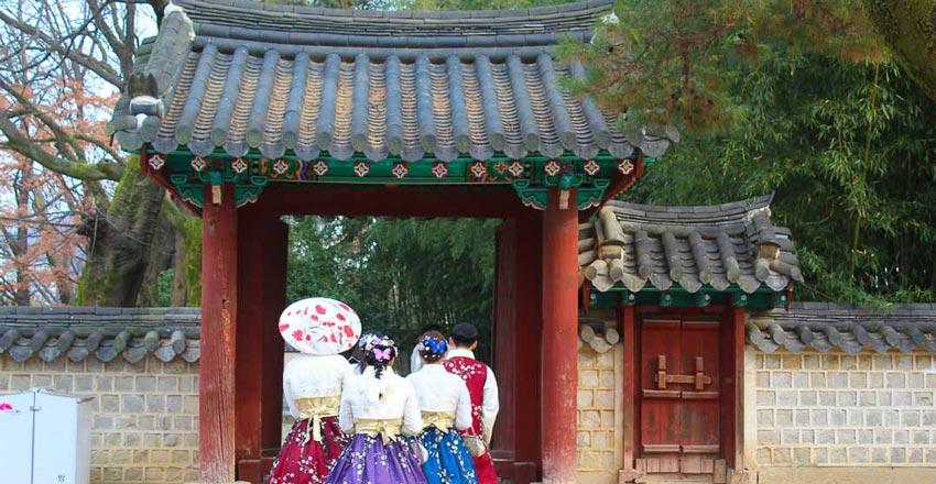 جنجو - سفر به کره جنوبی