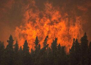 آتش سوزی در مراتع ایران