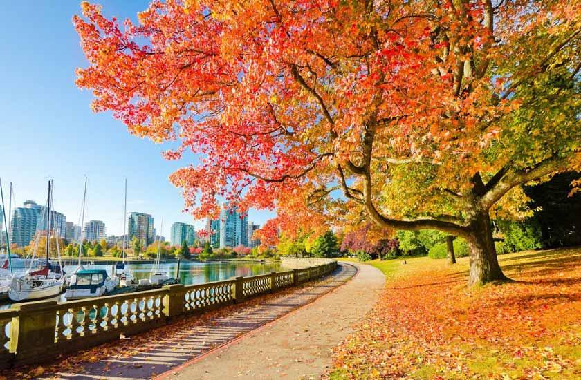 پارک استنلی - جاهای دیدنی ونکوور