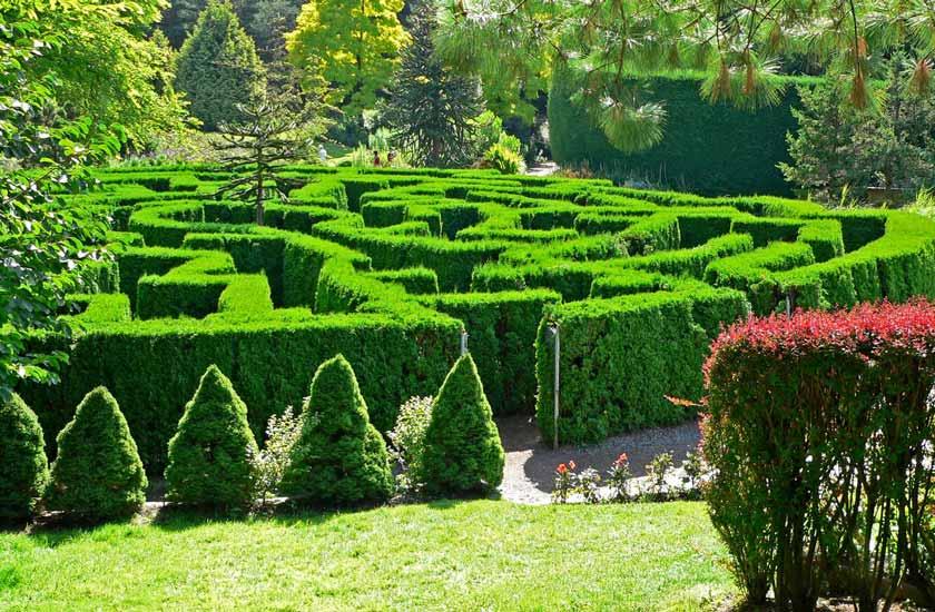 باغ گیاهان وندوسان