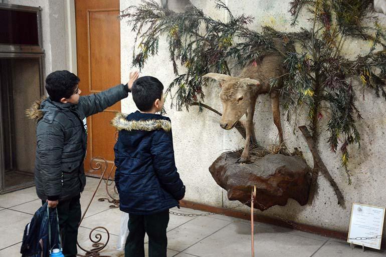 موزه علم و طبیعت در موزه های اهواز