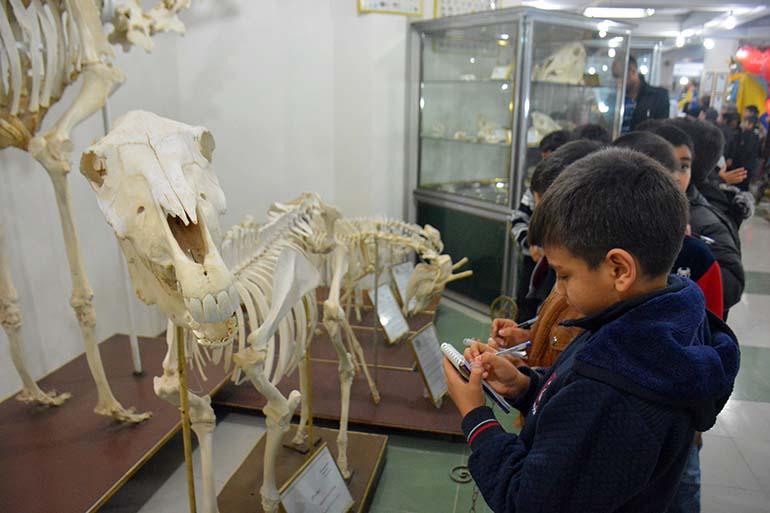موزه علم و طبیعت اهواز