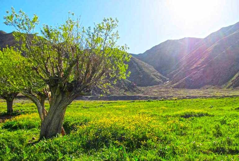 دشت هویج تهران؛ تکهای از بهشت اما نزدیک تهران
