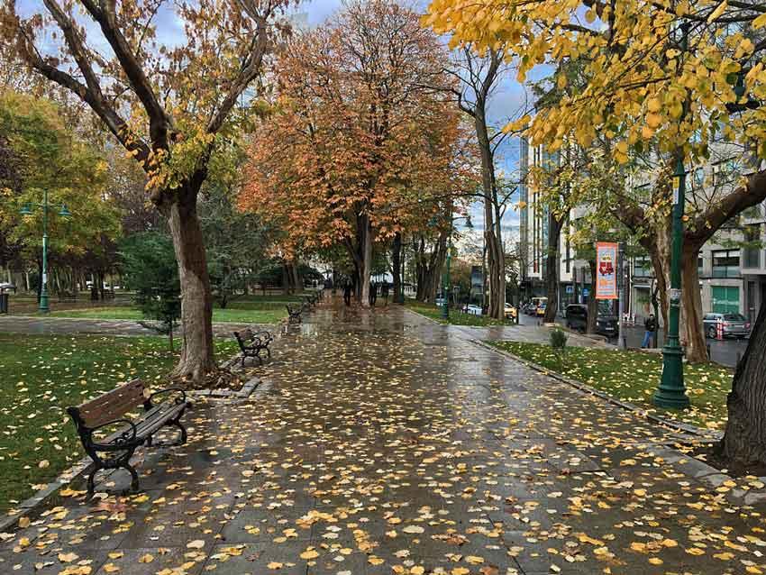 پارک تقسیم گزی