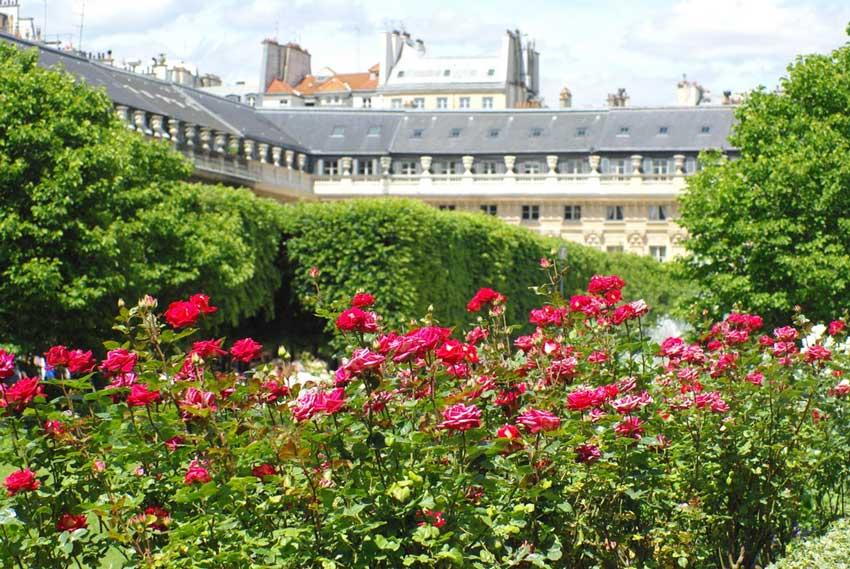 پَله رویال پاریس